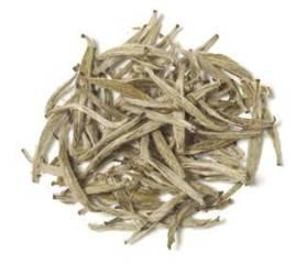 økologisk Yin Zhen White Bud